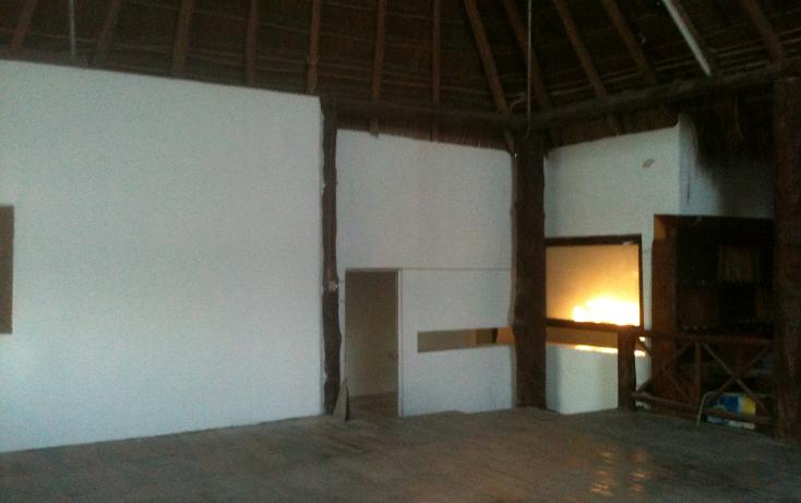 Foto de terreno comercial en renta en  , nicte-ha, solidaridad, quintana roo, 1272179 No. 16