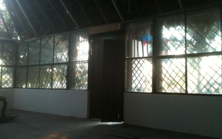 Foto de terreno comercial en renta en  , nicte-ha, solidaridad, quintana roo, 1272179 No. 20