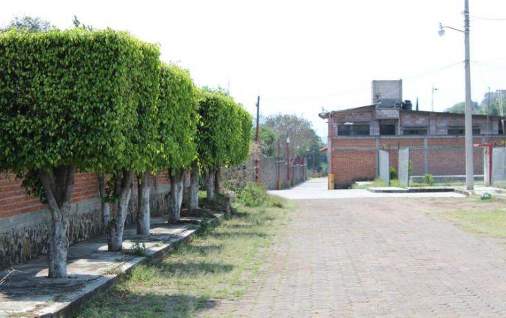 Foto de terreno habitacional en venta en niño perdido 1, totolapan, totolapan, morelos, 1934434 no 07