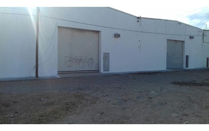 Foto de nave industrial en renta en  , niños héroes, tampico, tamaulipas, 2040076 No. 01