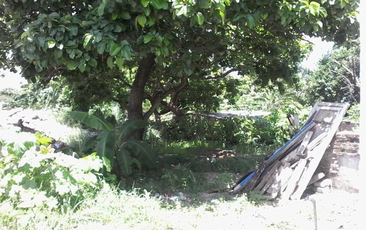 Foto de terreno habitacional en renta en  nonumber, 21 de abril, veracruz, veracruz de ignacio de la llave, 534832 No. 05