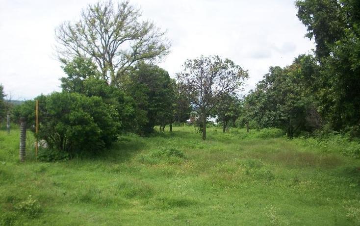 Foto de terreno habitacional en venta en  nonumber, alpuyeca, xochitepec, morelos, 1581542 No. 04