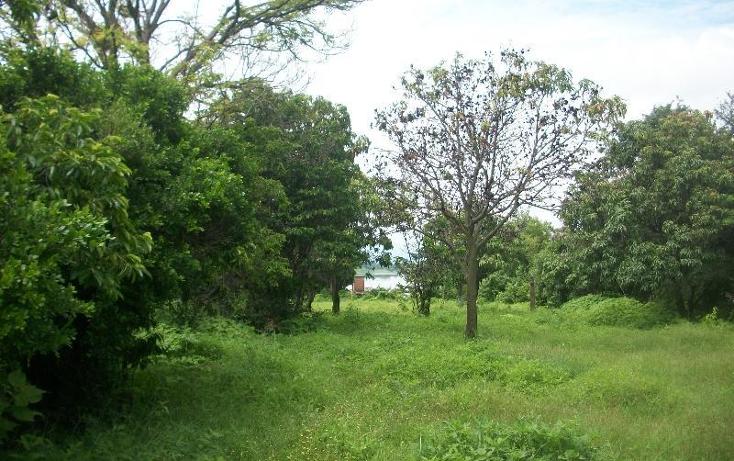 Foto de terreno habitacional en venta en  nonumber, alpuyeca, xochitepec, morelos, 1581542 No. 05
