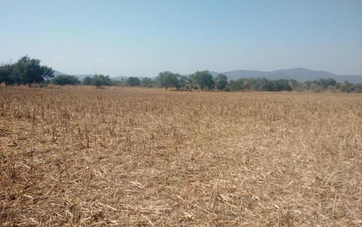 Foto de terreno comercial en venta en  nonumber, amayuca, jantetelco, morelos, 1745521 No. 03