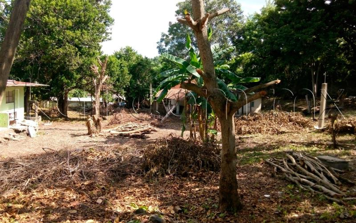 Foto de terreno habitacional en venta en  nonumber, benito ju?rez, tuxpan, veracruz de ignacio de la llave, 1727254 No. 03