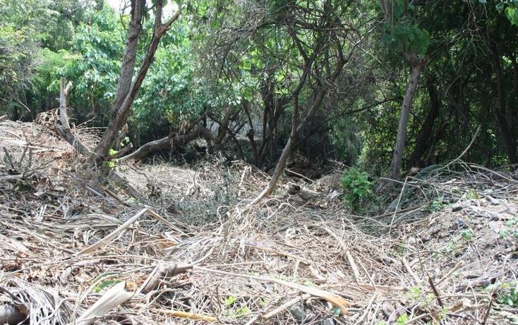 Foto de terreno habitacional en venta en  nonumber, burgos, temixco, morelos, 1345591 No. 04