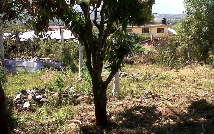 Foto de terreno habitacional en venta en  nonumber, canindo, jacona, michoacán de ocampo, 501849 No. 03