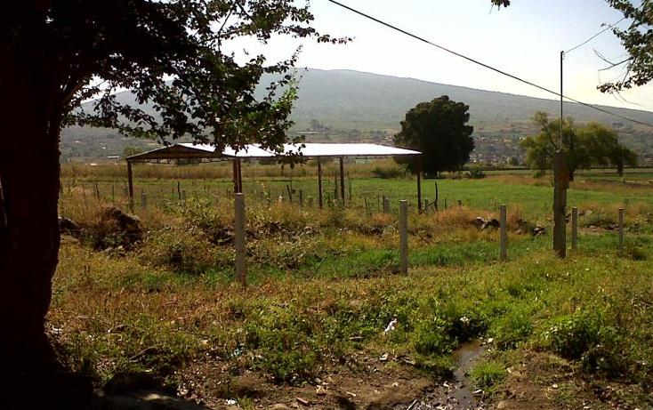 Foto de terreno industrial en venta en  nonumber, central de abastos, zamora, michoacán de ocampo, 501253 No. 06