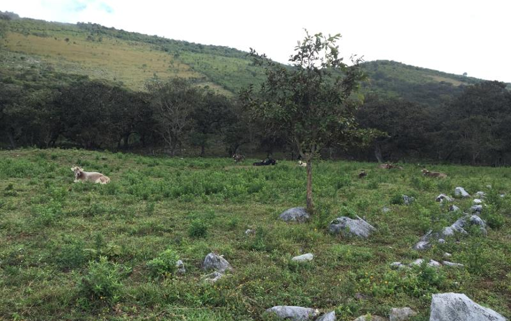 Foto de terreno comercial en venta en  nonumber, gabriel esquinca, san fernando, chiapas, 1496941 No. 12