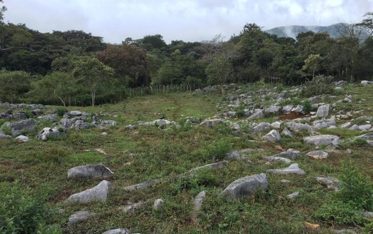 Foto de terreno comercial en venta en  nonumber, gabriel esquinca, san fernando, chiapas, 1496941 No. 13