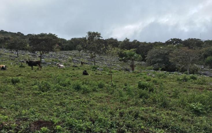 Foto de terreno comercial en venta en  nonumber, gabriel esquinca, san fernando, chiapas, 1496941 No. 20