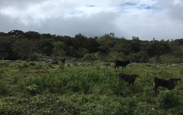 Foto de terreno comercial en venta en  nonumber, gabriel esquinca, san fernando, chiapas, 1496941 No. 21