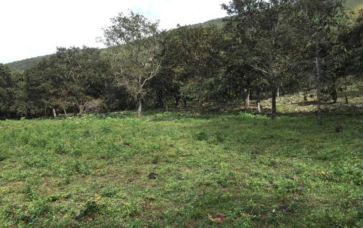 Foto de terreno comercial en venta en  nonumber, gabriel esquinca, san fernando, chiapas, 1496941 No. 22