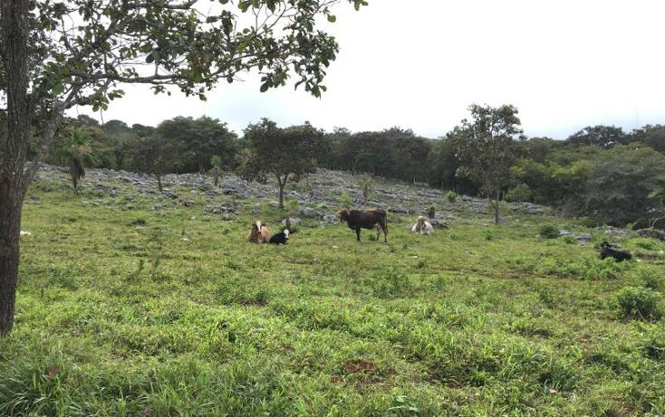 Foto de terreno comercial en venta en  nonumber, gabriel esquinca, san fernando, chiapas, 1496941 No. 26