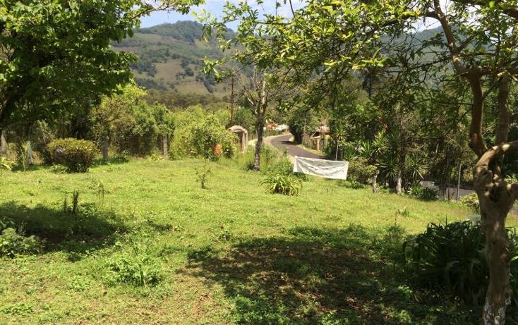 Foto de terreno habitacional en venta en  nonumber, huauchinango, huauchinango, puebla, 1819392 No. 11