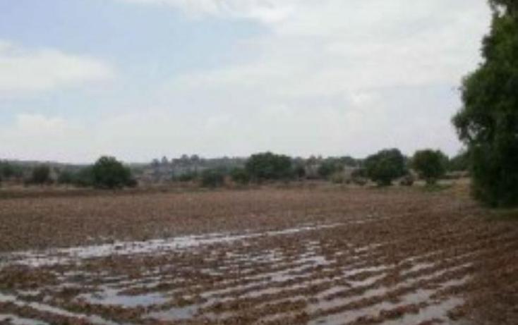 Foto de terreno habitacional en venta en  nonumber, hueypoxtla, hueypoxtla, m?xico, 395655 No. 07