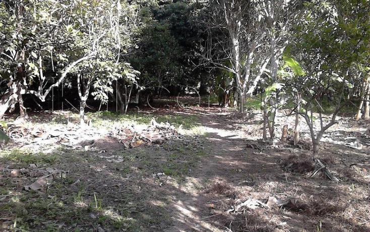 Foto de casa en venta en  nonumber, isla de juana moza, tuxpan, veracruz de ignacio de la llave, 1689982 No. 06