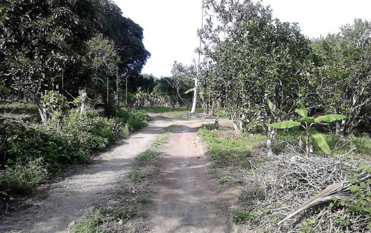 Foto de casa en venta en  nonumber, isla de juana moza, tuxpan, veracruz de ignacio de la llave, 1689982 No. 09