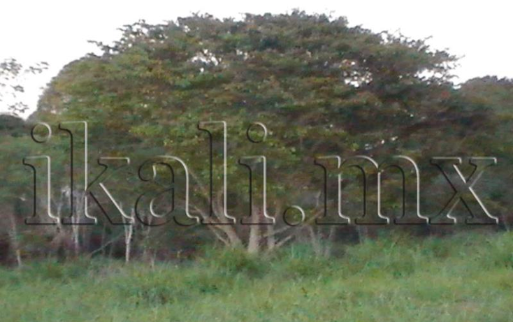 Foto de terreno habitacional en venta en  nonumber, isla de juana moza, tuxpan, veracruz de ignacio de la llave, 573434 No. 07