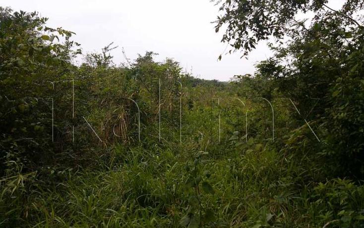 Foto de terreno habitacional en venta en  nonumber, laja de coloman, tuxpan, veracruz de ignacio de la llave, 579500 No. 08