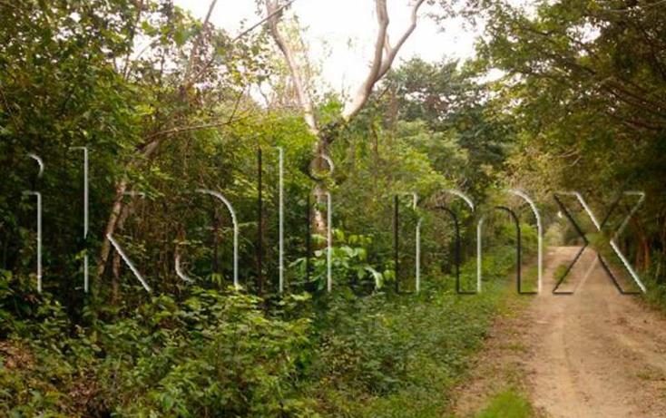 Foto de terreno habitacional en venta en  nonumber, laja de coloman, tuxpan, veracruz de ignacio de la llave, 579500 No. 09