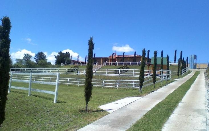Foto de rancho en venta en  nonumber, loma alta, chignahuapan, puebla, 399139 No. 03