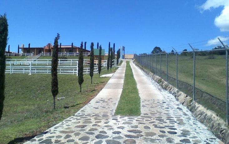 Foto de rancho en venta en  nonumber, loma alta, chignahuapan, puebla, 399139 No. 05