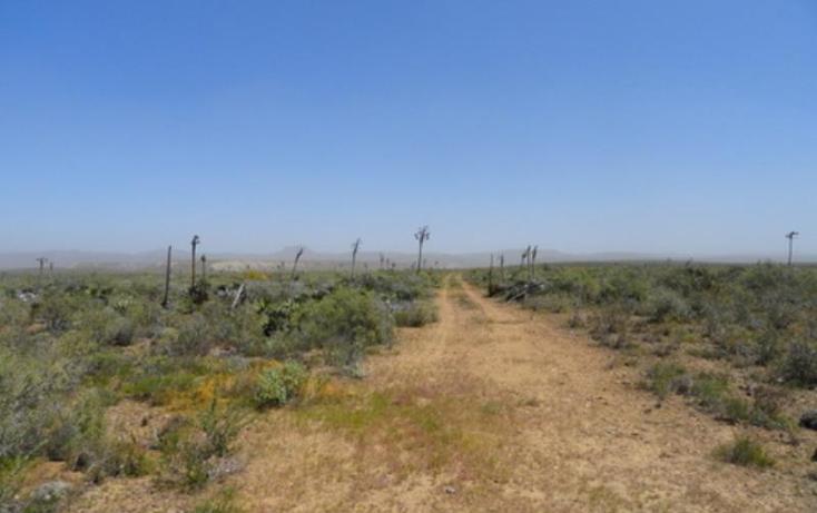Foto de terreno comercial en venta en  nonumber, los pinos, ensenada, baja california, 809341 No. 02