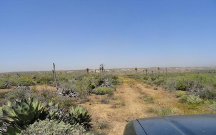 Foto de terreno comercial en venta en  nonumber, los pinos, ensenada, baja california, 809341 No. 05