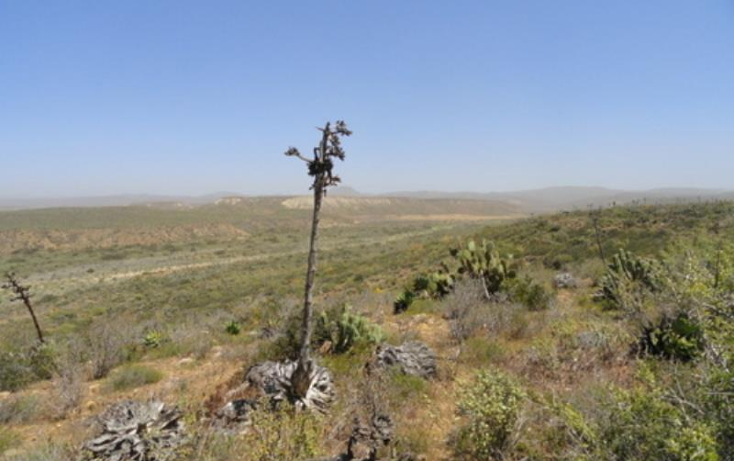 Foto de terreno comercial en venta en  nonumber, los pinos, ensenada, baja california, 809341 No. 06