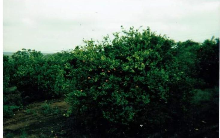 Foto de rancho en venta en  nonumber, montemorelos centro, montemorelos, nuevo león, 2023034 No. 04