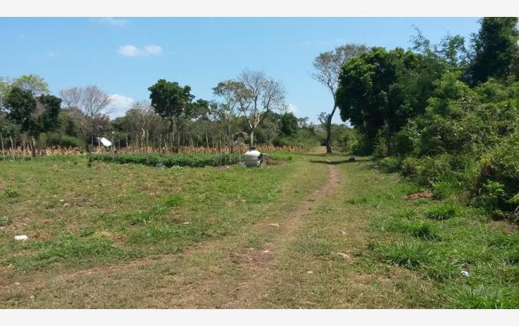 Foto de terreno comercial en venta en  nonumber, paamul, solidaridad, quintana roo, 522641 No. 02