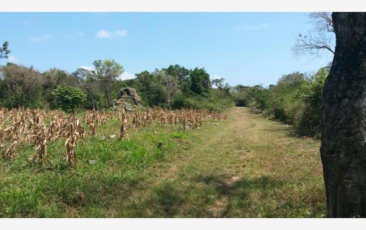 Foto de terreno comercial en venta en  nonumber, paamul, solidaridad, quintana roo, 522641 No. 03