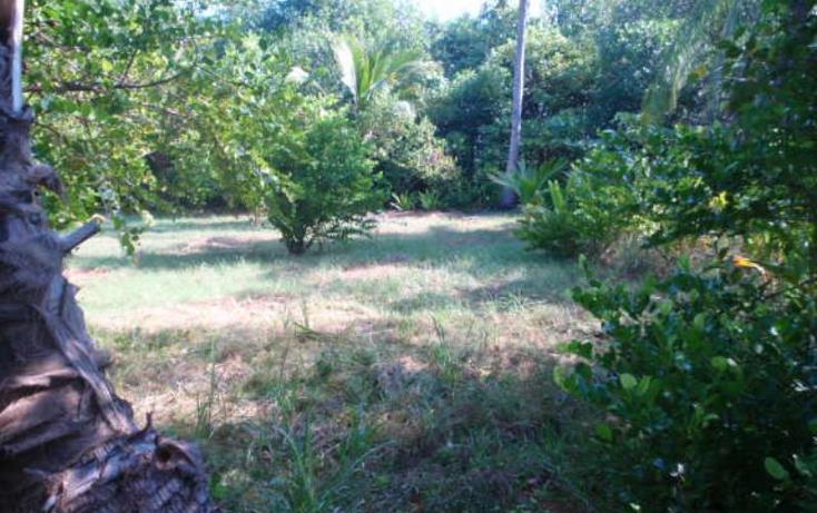 Foto de terreno comercial en venta en  nonumber, pesquería boca del cielo, tonalá, chiapas, 846065 No. 06