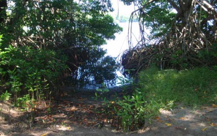 Foto de terreno comercial en venta en  nonumber, pesquería boca del cielo, tonalá, chiapas, 846065 No. 08