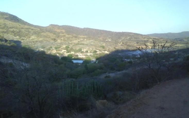 Foto de terreno habitacional en venta en  nonumber, pilcaya, chiautla, puebla, 717395 No. 04
