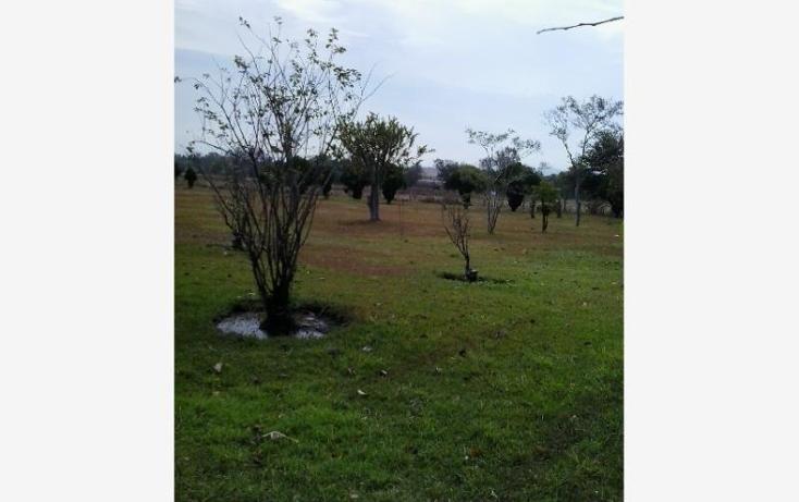 Foto de terreno habitacional en venta en  nonumber, rancho el zapote, tlajomulco de z??iga, jalisco, 1473379 No. 08