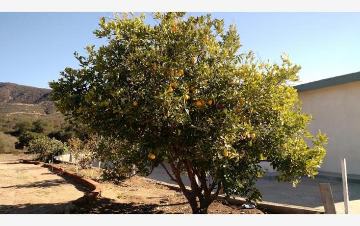 Foto de rancho en venta en  nonumber, san antonio de las minas, ensenada, baja california, 1577920 No. 45