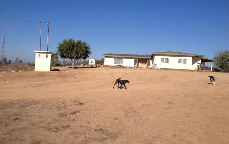 Foto de rancho en venta en  nonumber, san antonio de las minas, ensenada, baja california, 1577920 No. 51