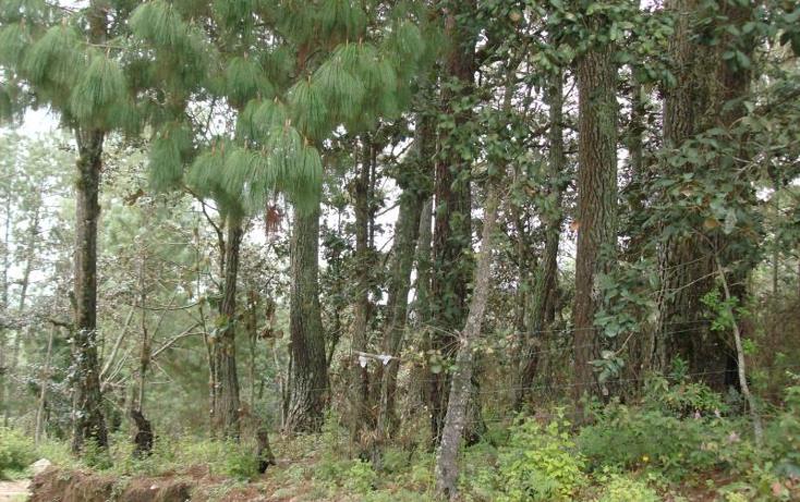 Foto de terreno habitacional en venta en  nonumber, san felipe ecatepec, san cristóbal de las casas, chiapas, 374318 No. 02