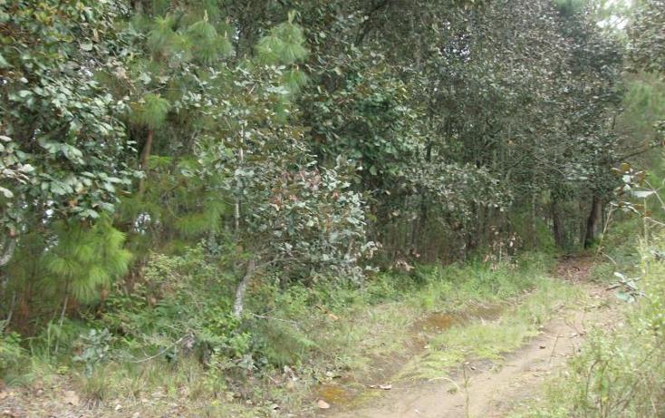 Foto de terreno habitacional en venta en  nonumber, san felipe ecatepec, san cristóbal de las casas, chiapas, 374318 No. 04