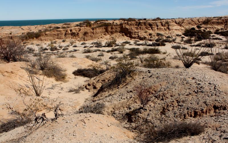 Foto de terreno comercial en venta en  nonumber, san felipe, mexicali, baja california, 1335959 No. 06