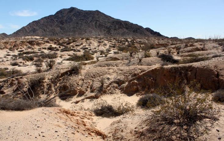 Foto de terreno comercial en venta en  nonumber, san felipe, mexicali, baja california, 1335959 No. 07