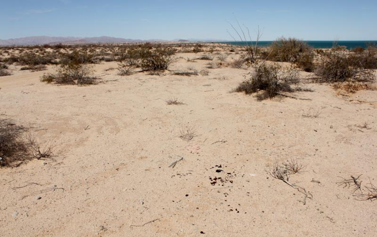 Foto de terreno comercial en venta en  nonumber, san felipe, mexicali, baja california, 1335959 No. 08