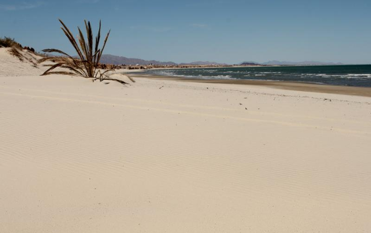 Foto de terreno comercial en venta en  nonumber, san felipe, mexicali, baja california, 1335959 No. 12