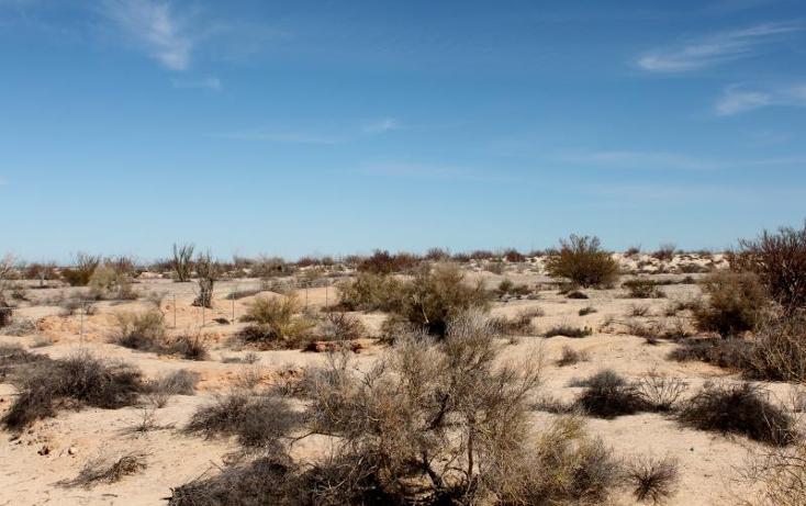 Foto de terreno comercial en venta en  nonumber, san felipe, mexicali, baja california, 1335959 No. 22
