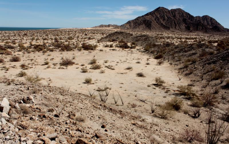 Foto de terreno comercial en venta en  nonumber, san felipe, mexicali, baja california, 1335959 No. 26