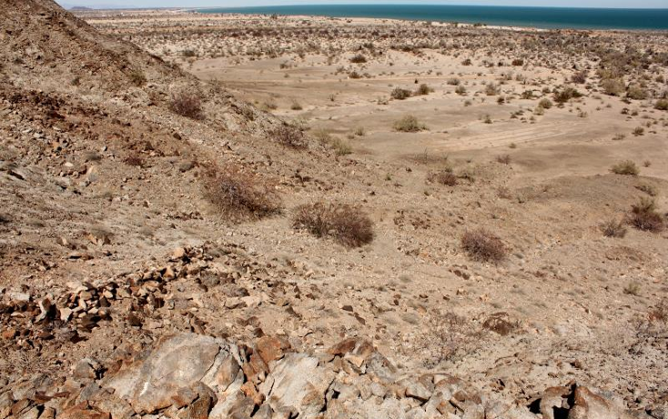 Foto de terreno comercial en venta en  nonumber, san felipe, mexicali, baja california, 1335959 No. 36