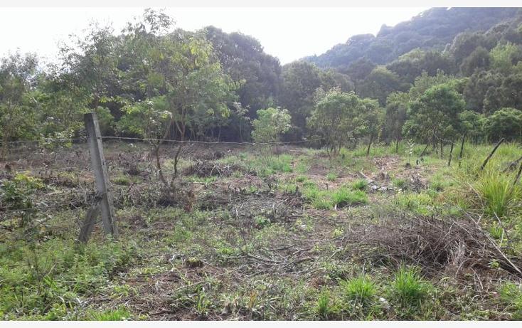 Foto de terreno habitacional en venta en  nonumber, san jos?, tepoztl?n, morelos, 1473459 No. 11