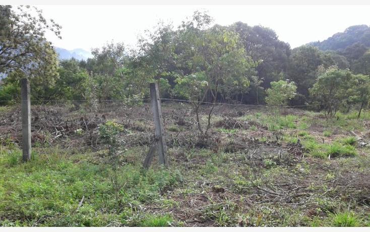 Foto de terreno habitacional en venta en  nonumber, san jos?, tepoztl?n, morelos, 1473459 No. 12